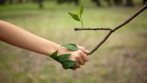 dia mundial medio ambiente 2021