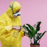 medidas para cuidar el medio ambiente