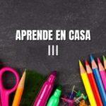 Aprende en Casa Guanajuato III: Temas del 15 al 19 de marzo Foto: Especial