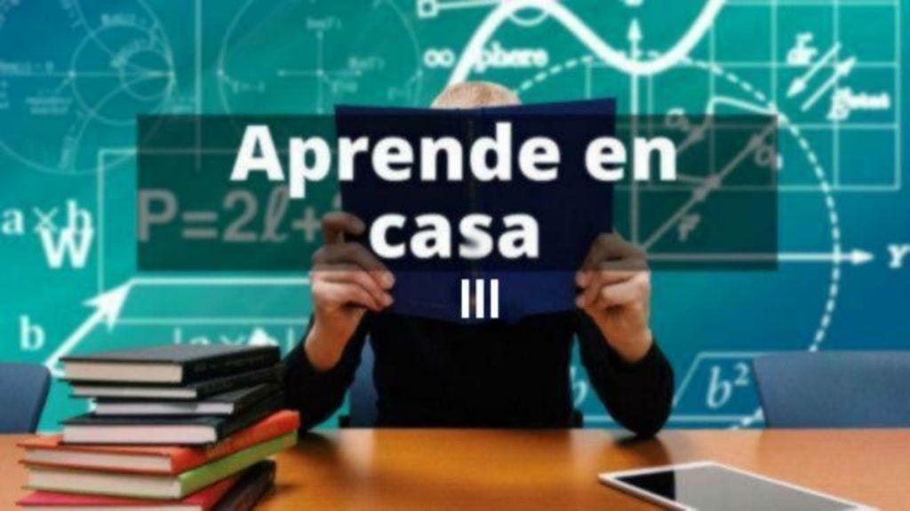 Aprende en Casa Guanajuato III: Temas del 12 al 16 de abril Foto: Especial