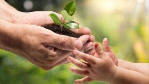 medio ambiente y consumo sostenible