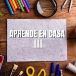 Aprende en Casa Guanajuato III: Temas del 17 al 21 de mayo Foto: Especial