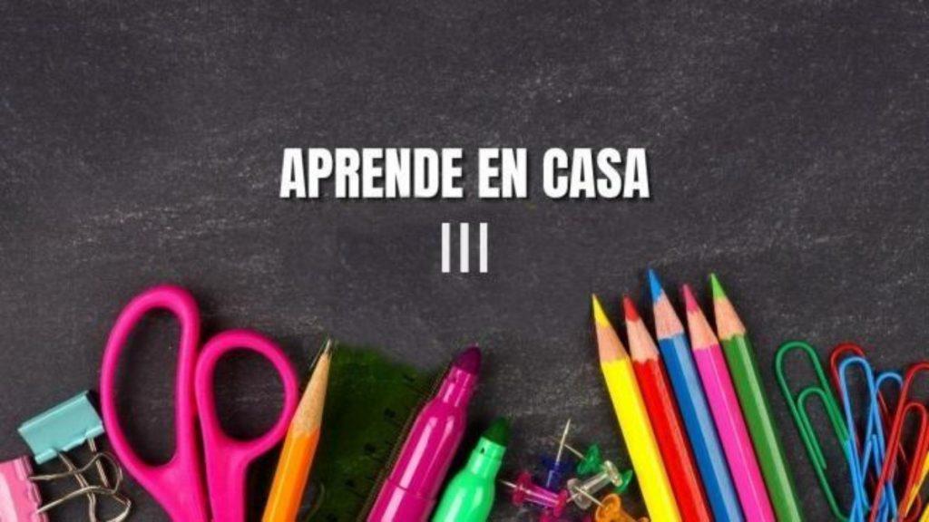 Aprende en Casa Guanajuato III: Temas del 10 al 14 de mayo Foto: Especial