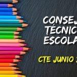 CTE JUNIO CONSEJO TECNICO ESCOLAR OCTAVA SESION SEP