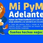 Mi PyME Adelante Guanajuato 2021. Aquí puedes hacer tu prerregistro Foto: Especial