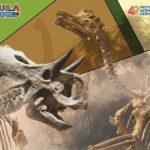 Exposición Joyas Fósiles de Coahuila ¿Cuándo estará en Guanajuato? Foto: Especial